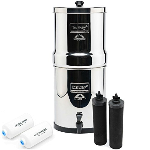 Best Countertop Water Filter Reviews 2018 Home Health Living