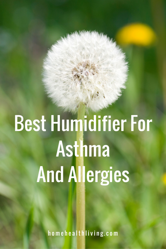 best humidifier for asthma allergies