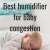 Best Humidifier For Baby Congestion Reviews 2021