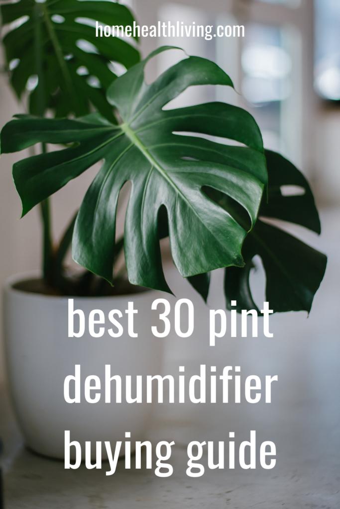 best 30 pint dehumidifier